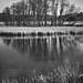 Watervliet Reservoir B&W