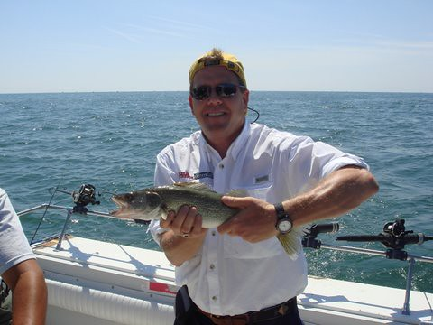 Lake erie walleye fishing aboard the charter boat stray ca for Weekly fishing report mi