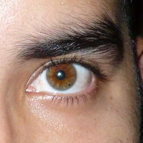 Recent Photos T... Eyelashes