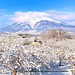 Iwaki Mountain (Volcano) (Hirosaki Japan). © Glenn Waters.  .  2,100 visits to this image.  Thank you.