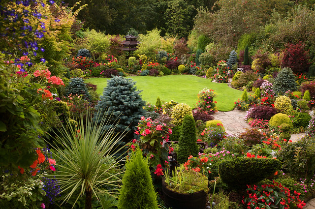 garden view from the kitchen window sept 2 by four seasons garden - Garden View