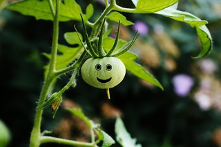 Happy Tomato! | by Ebonezer