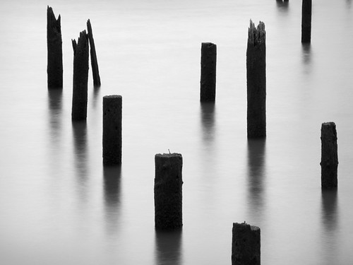 Pilings 2 | by david.bardes