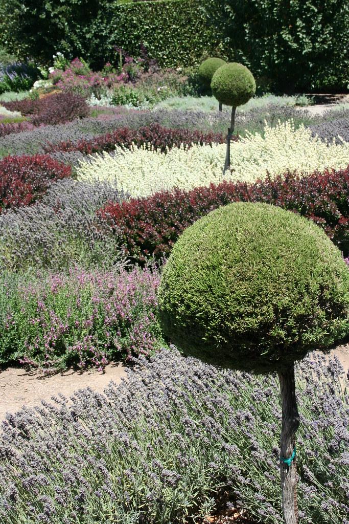 Filoli Gardens Knot Garden Muted Tones Of The August Gar Flickr