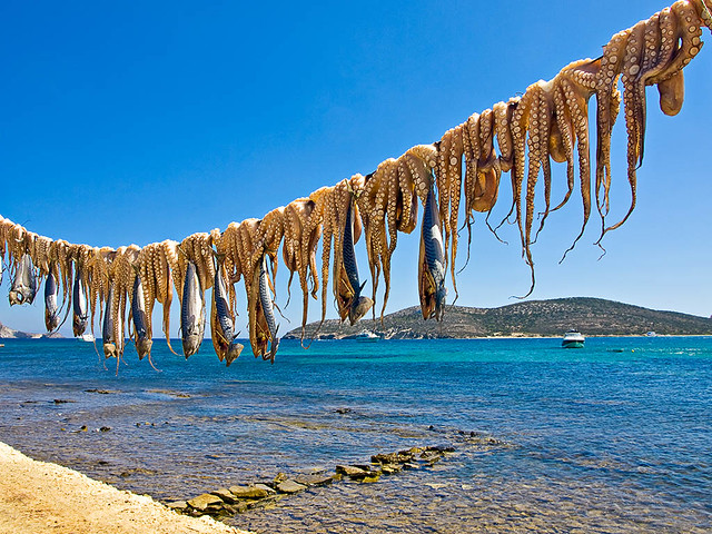 On the Rope | Octopus and fish drying in the sun ...