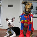 Batdog & Superpuppy Keeping a Watchful Eye over El Cerrito 2 of 3