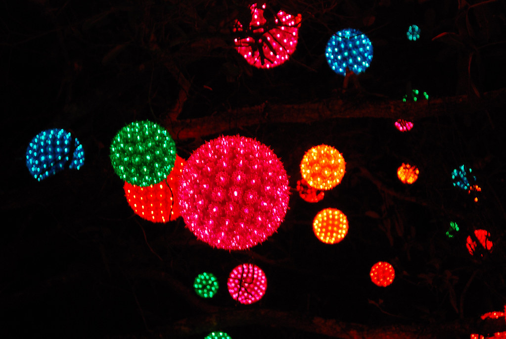 Light Balls Hanging In A Tree Christmas Lights At