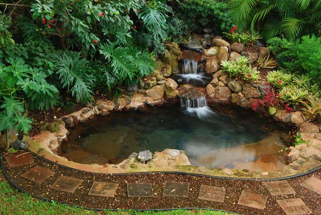 Backyard jacuzzi waterfall jacuzzi in the back of the for Home garden pond design