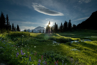 tipsoo meadow | by Mike Hornblade