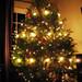 The Tree...lights off
