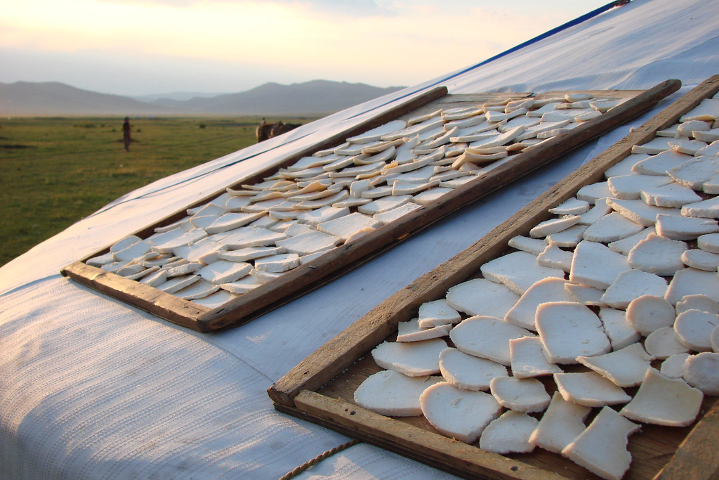 Aaruul The Mongolian Cheese Sheep Or Goat Cheese Drying