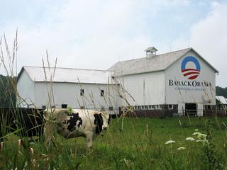 barn_cow | by Barack Obama