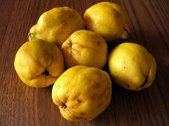 More quinces! | by Spin Spin