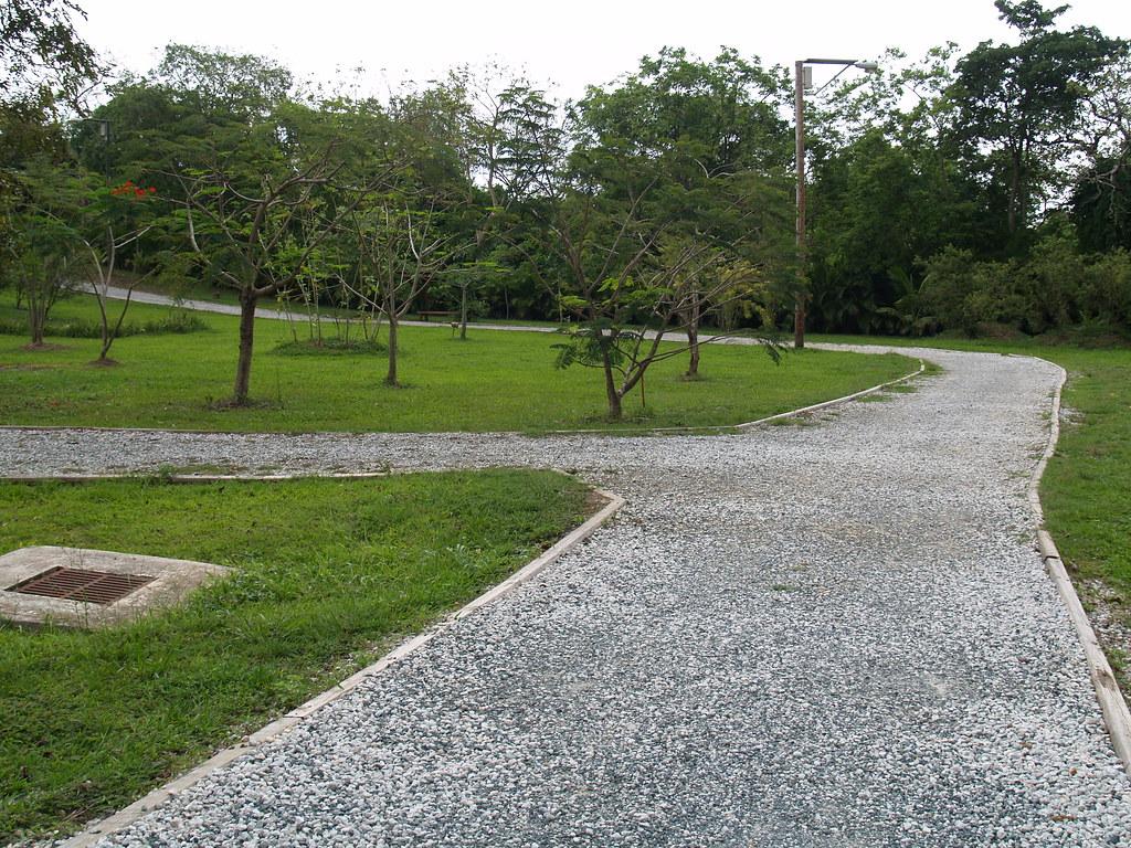 Caminos en f en el jard n bot nico y cultural de caguas for Bodas en el jardin botanico de caguas