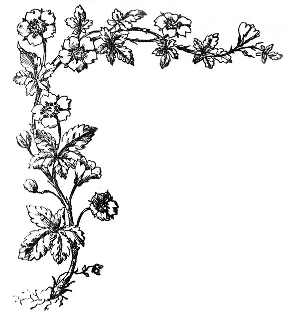 Image Result For Solstice Coloring Page