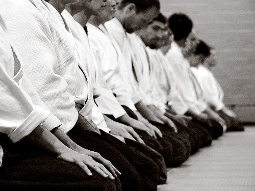 Aikido | by Dr Papillon and Hoedic