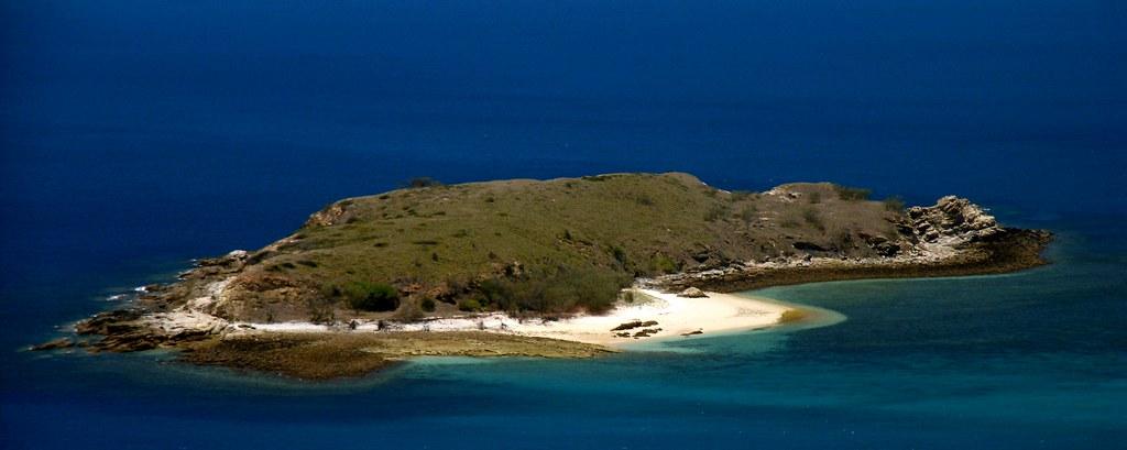 The Island Is Doomed Club Penguin Rewritten