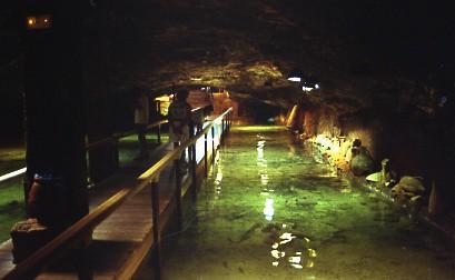 Cave Aquarium Ibiza On The Outskirts Of San Antonio