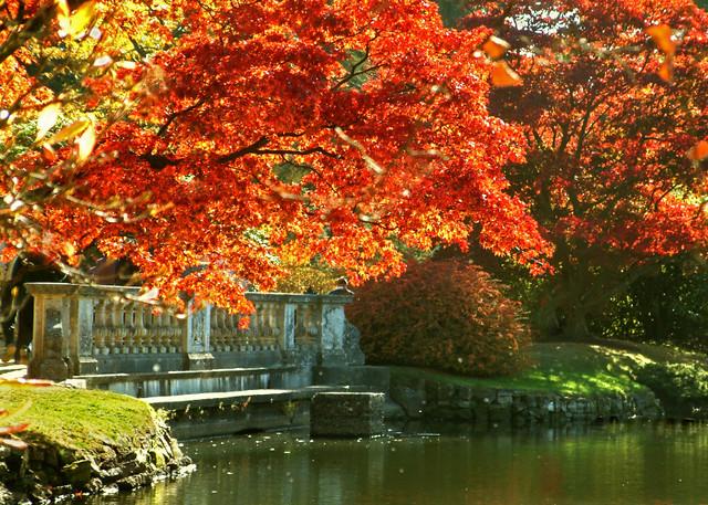 Autumn At Sheffield Park Gardens East Sussex Sheffield