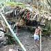 ternate_kahoho_shelter500