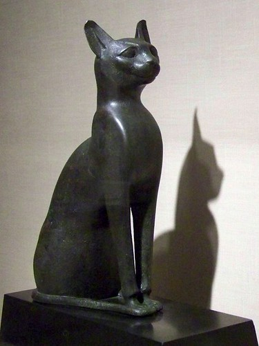 Sacred Cat Of Bastet Flickr Photo Sharing