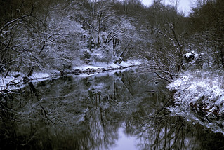 Neuse River Snow | by SingNShoot