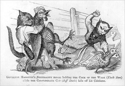 Confederate Cat Us Civil War 1861 North And South