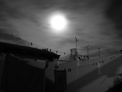 La lente?...las lineas?...las sombras?...la luna?...