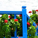 Skopelos Colors