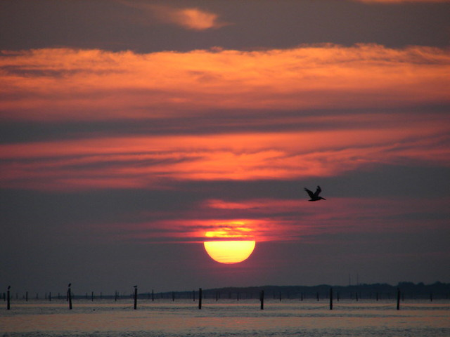 Morning diffusion 7 2 08 sunrise on the chesapeake bay for Lynnhaven fishing pier report