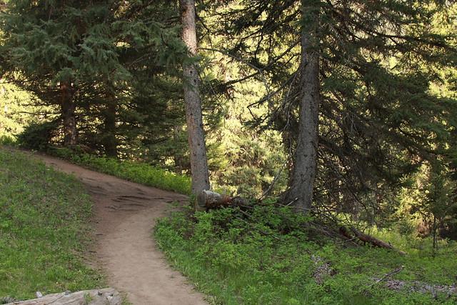 Montana June 208 113