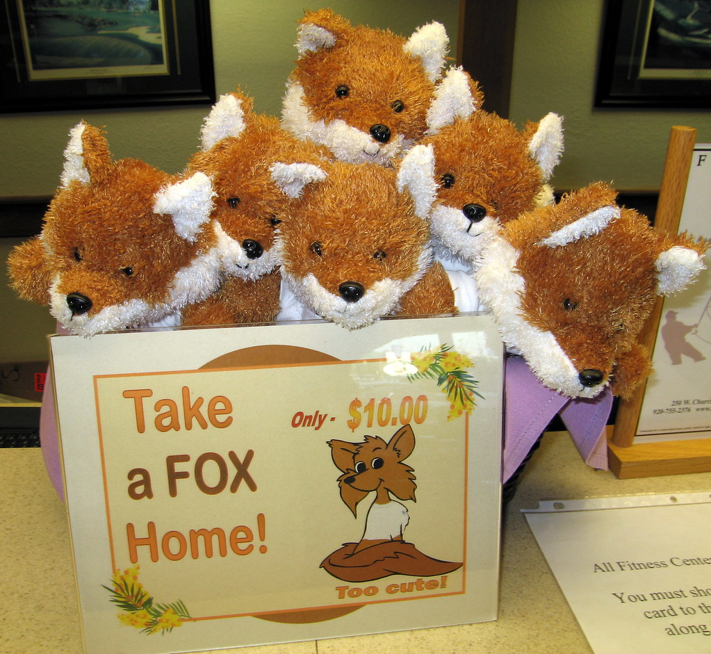 What Is A Group Of Foxes Called 14