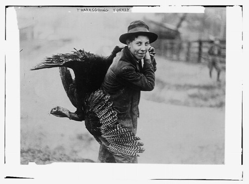 Thanksgiving turkey  (LOC) | by The Library of Congress