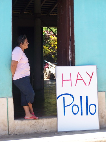 Hay Pollo | by The Hungry Cyclist