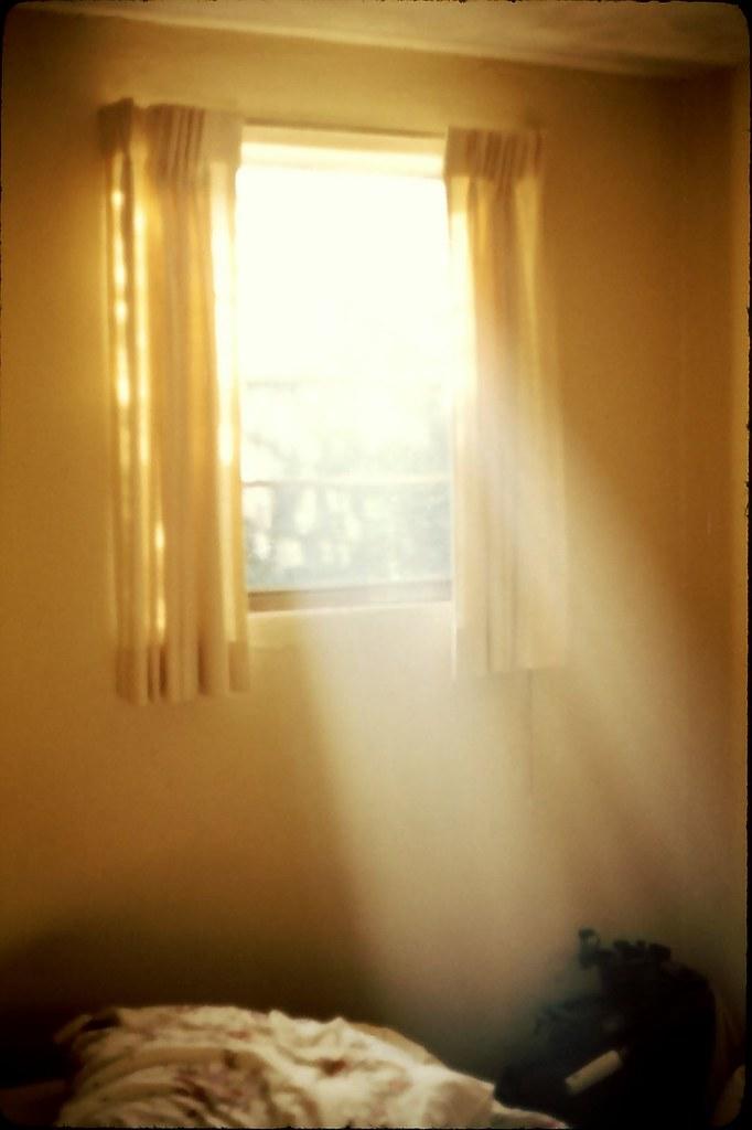 What Light Through Yonder Window Breaks Fox Meadows