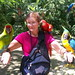 Macaw Mt. Bird Park