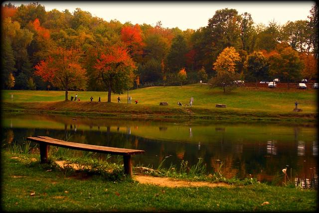 Autunno al lago flickr photo sharing - Valbonella bagno di romagna ...