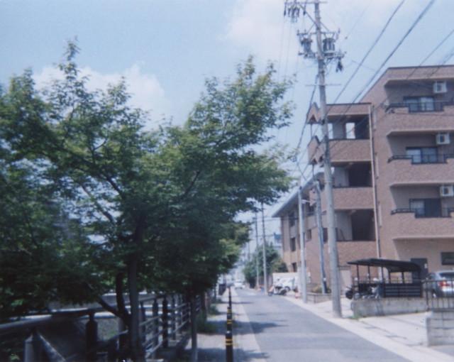 初夏の植田川8(愛知県名東区)