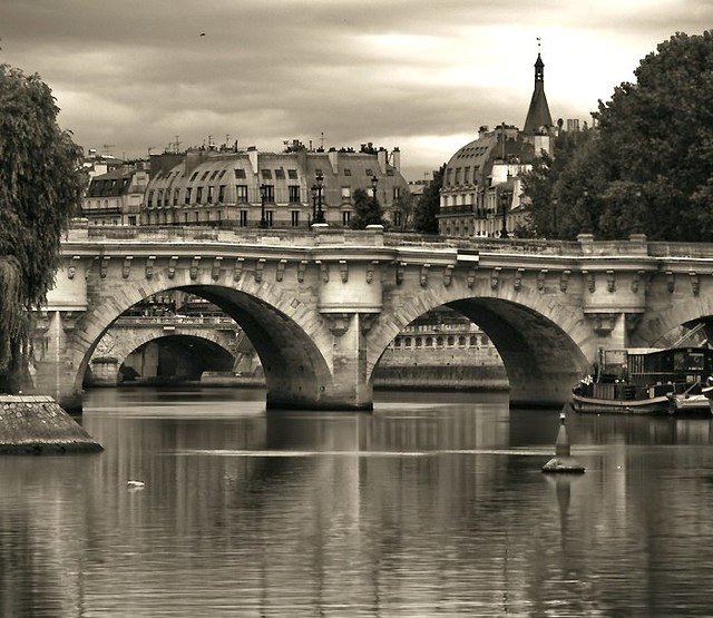 Le Pont Neuf Dark Sepia View In Large Gregory