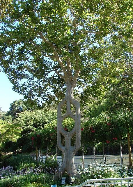 Gilroy gardens california one of the circus trees for Gilroy garden trees