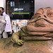 1947 Elvis Trooper + Jabba the Hutt