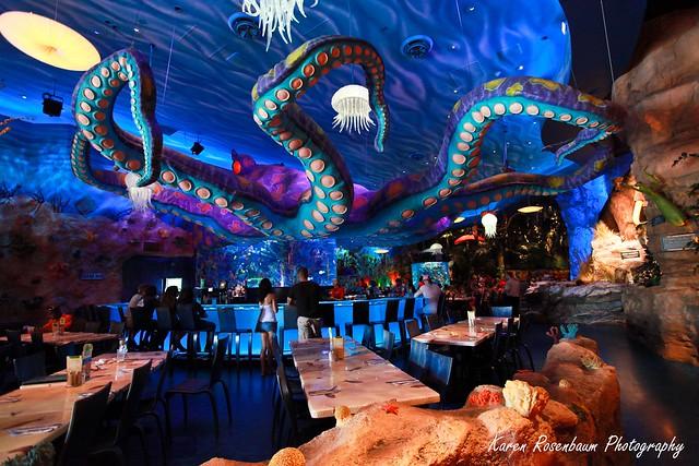 T rex restaurant explore karen rosenbaum 39 s photos on for Restaurant t rex