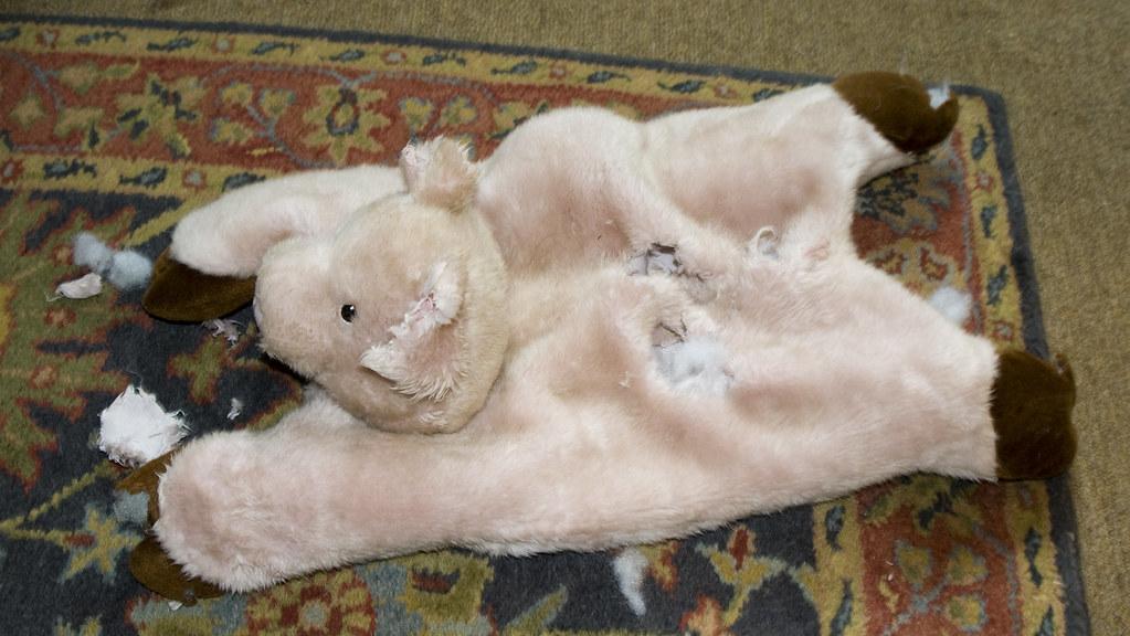 Stuffing Free Dog Bed
