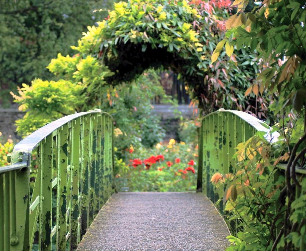National Botanic Gardens Glasnevin Dublin Ireland   Murt ...