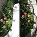 backyard garden planter -before