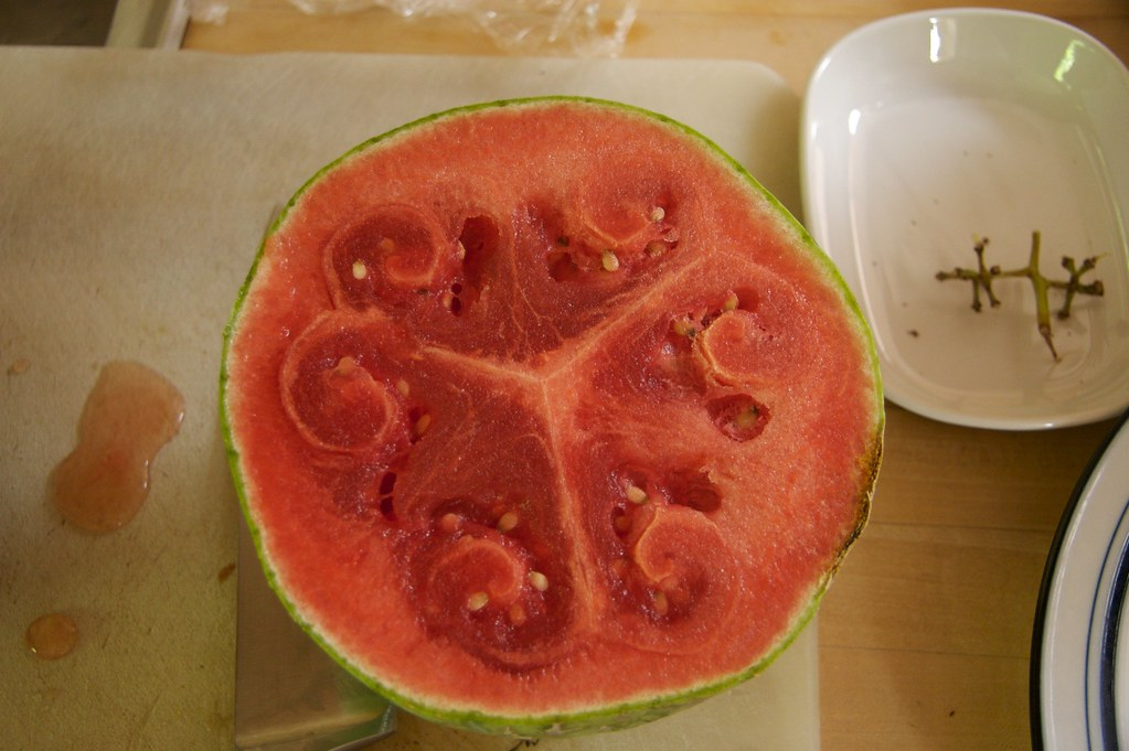 About It >> The unusually shaped watermelon. | It was overripe, but