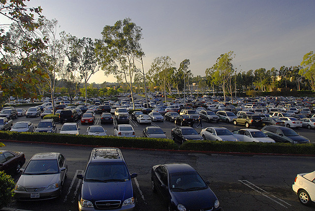 Black Friday Parking Lot Car Crashing