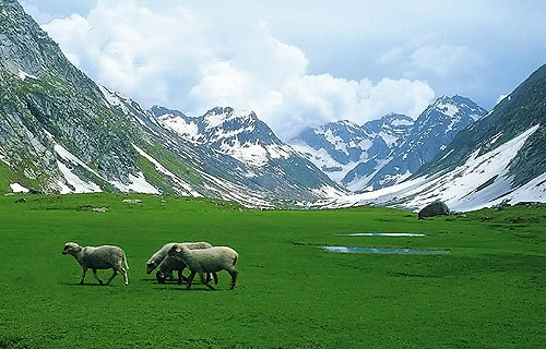 Pakistan i beauty - 1 part 6