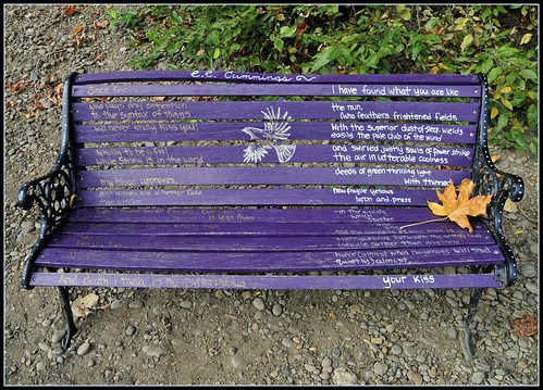 e e cummings bench | by Tony Fischer Photography