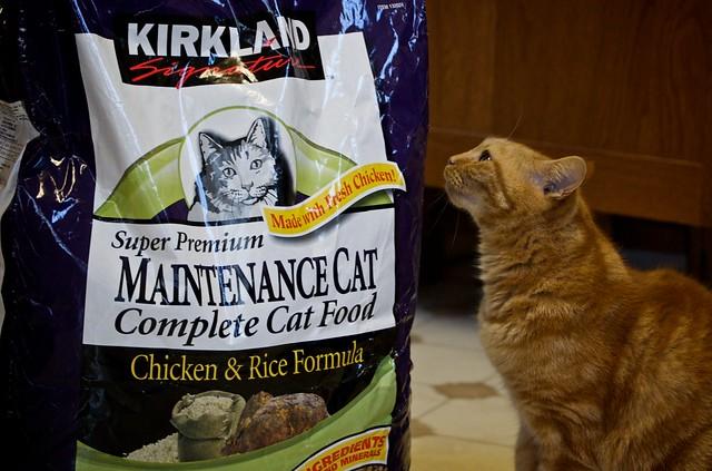 Kirkland Cat Food Ratings